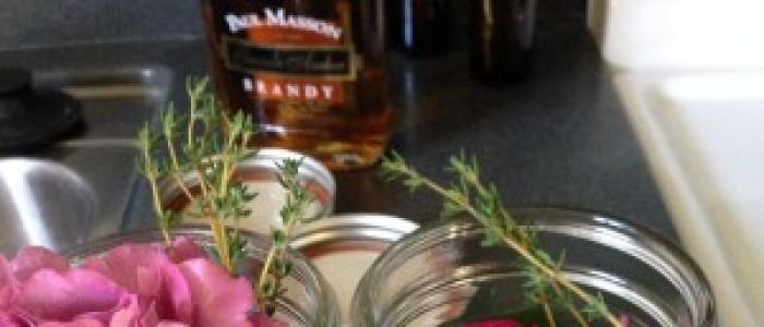 Traveling Herbalist